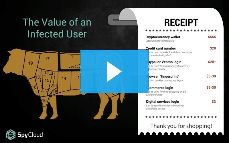 Webinar - Malware - Value of an Infected User